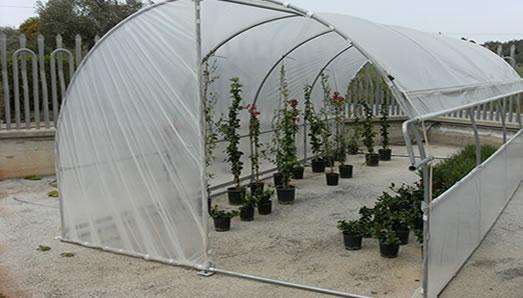 Promec srl fabbrica serre fotovoltaiche e serre in metallo for Serra agricola usata